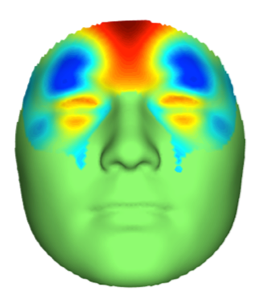 The fifteen genome regions strongly linked to face shape.