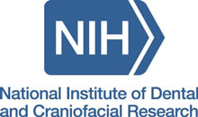 National Institute of Dental and Craniofacial Research logo