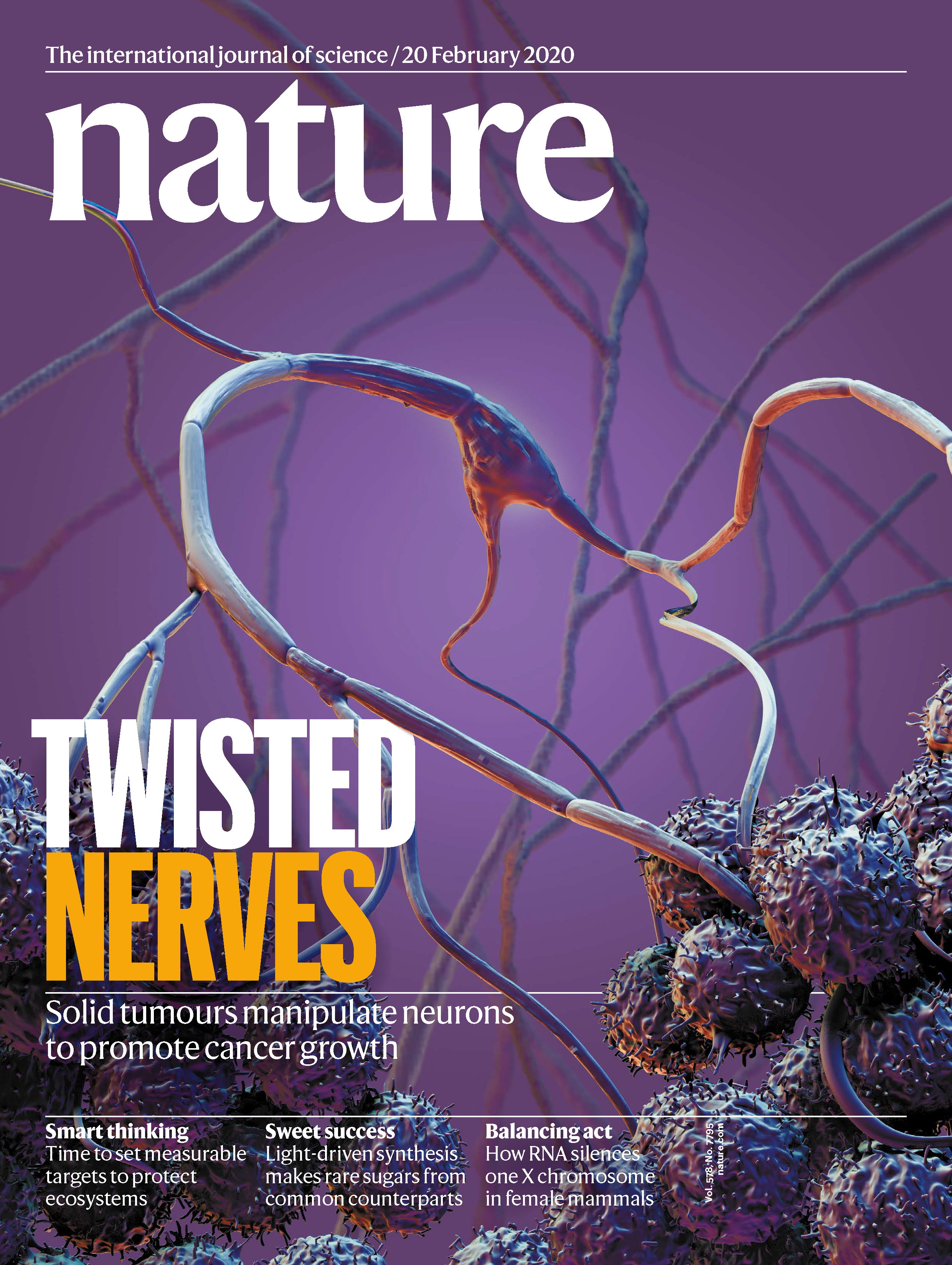 February 2020 cover of Nature Magazine showing nerves and cancerous tumors