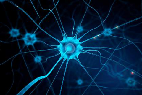 Researchers investigated the neural circuits responsible for itch. Peshkova/iStock/Thinkstock