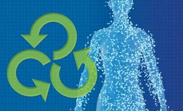 Autotherapies: New Opportunities in Regenerative Medicine | National