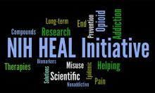 NIH Heal Initiative Word Cloud