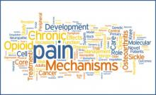 Pain Word CLuster